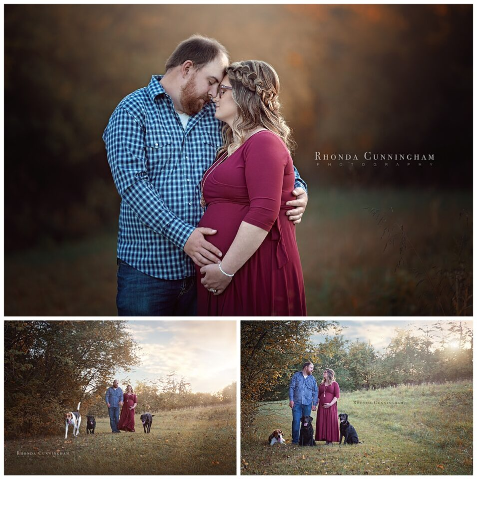 Collage of maternity pictures in Lexington, Ky with pets