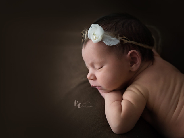 Newborn portrait of baby girl posed on a deep brown backdrop by Rhonda Cunningham Photography, Lexington Ky newborn photographer